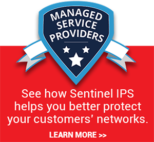 IPS & IDS Managed Service Providers